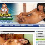 Brazilian Transsexuals Acount